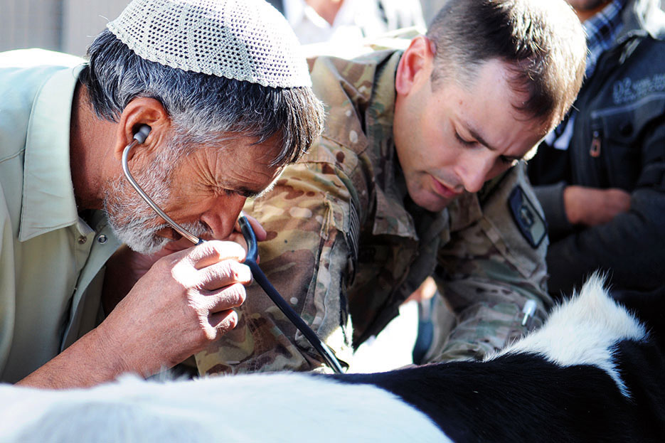 U.S. Army veterinarian trains local Afghans as part of joint effort including Provincial Reconstruction Team Farah, 438th Medical Detachment Veterinary Services, and Special Operations Task Force–West to promote public health in Farah Province (U.S. Navy/Matthew Stroup)