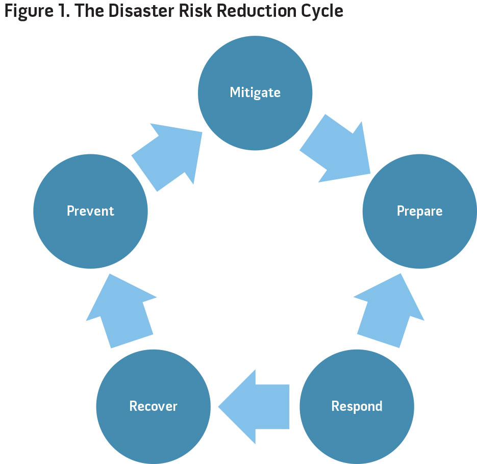 Figure 1. The Disaster Risk Reduction Cycle