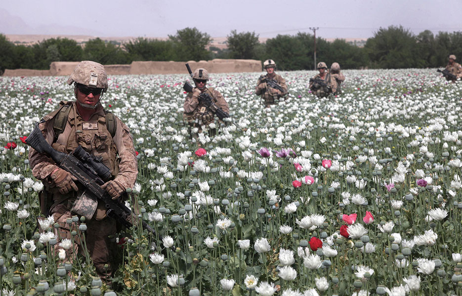 Marines move through poppy field on their way to Patrol Base Mohmon in Lui Tal District, Helmand Province, Afghanistan, April 17, 2012 (U.S. Marine Corps/Ismael Ortega)
